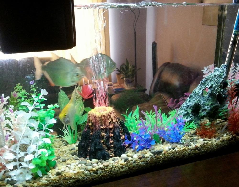 Volcano air bubble stone rockery oxygen pump aquarium fish for Aquarium stone decoration